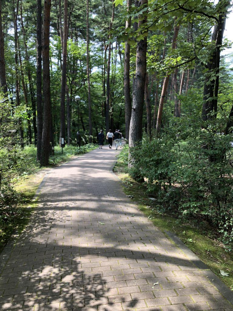 まるで森の中を散歩しているみたい